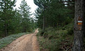 aitana_camino