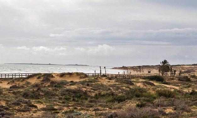 Playas de Elche