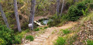 nacimiento del rio vinalopo